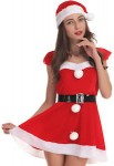 Mrs. Claus Sexy Christmas Costume