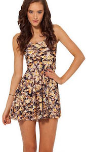 Bee Covered Skater Dress