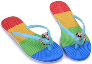 Rainbow flip flops with little fox on it